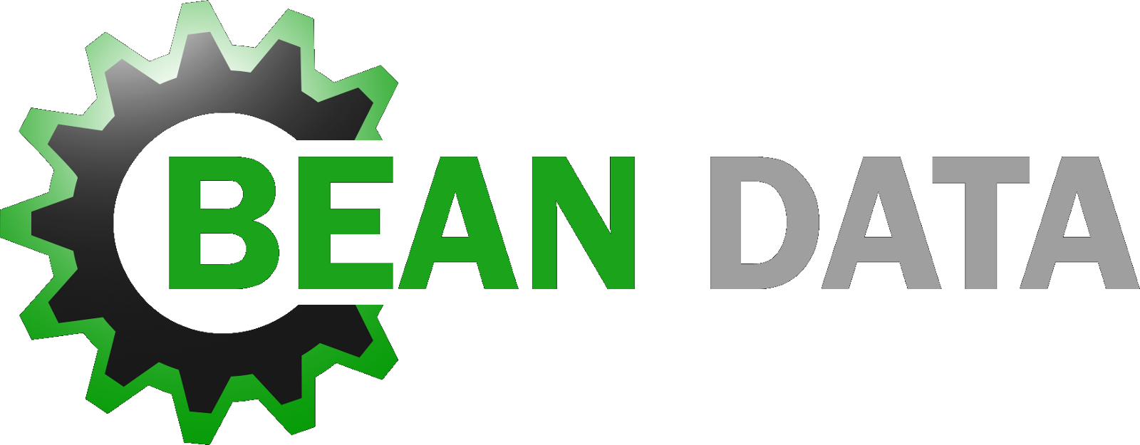 Bean Data - Computer, Network, Web and Information Technology Services